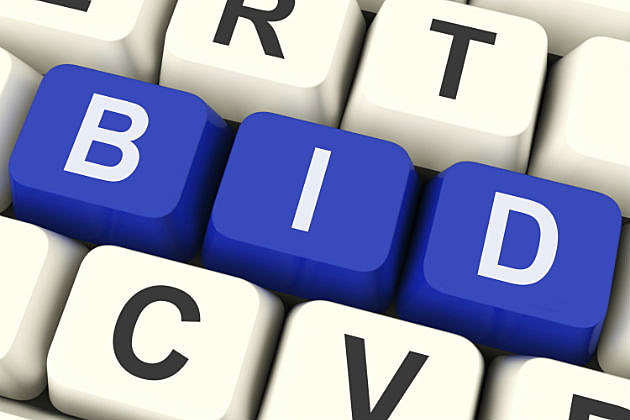 Bids for Bargains Online